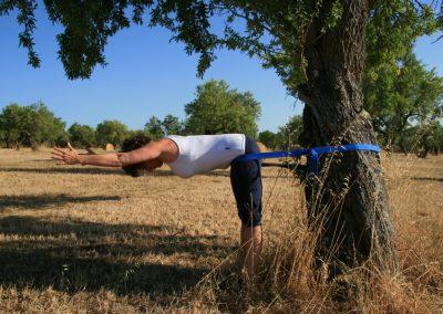 Yogavielfalt